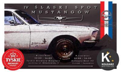 IV Śląski Spot Mustangów 2019