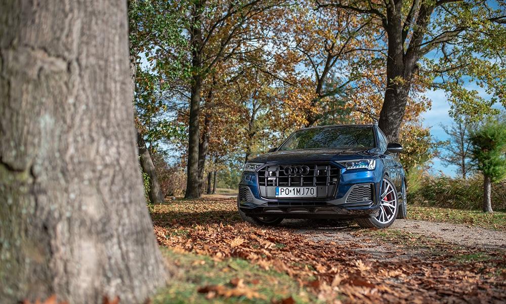 Audi Q7 profil 2
