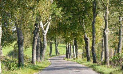 Najpiękniejsze trasy w Polsce